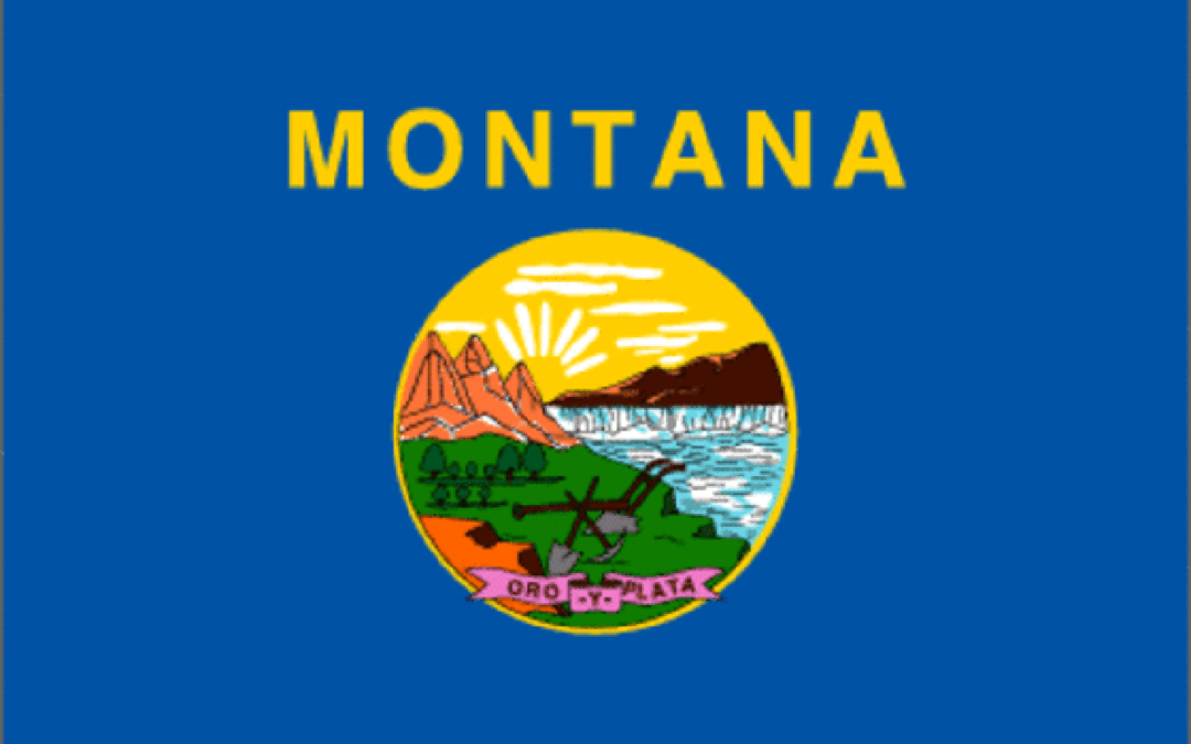 Here's How to Get Your FFL in Montana